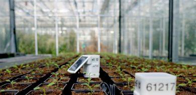 Dankzij IoT kunnen boeren gebruik maken van slimme apparaten om sproeisystemen aan en uit te zetten, monitors om oogst-opbrengsten te meten, sensoren voor bodemvocht.